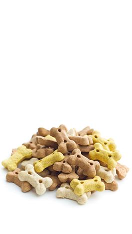 ventes accessoires et alimentation pour chien